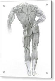 Nude 2 Acrylic Print by Valeriy Mavlo
