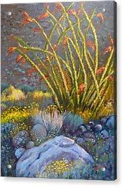 Ocotillo At Dusk Acrylic Print by Bonita Waitl
