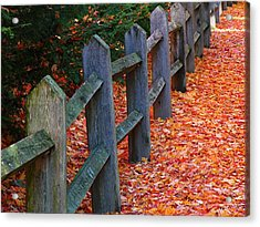 October Light Acrylic Print by Juergen Roth