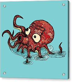 Octopus - Color Acrylic Print by Karl Addison