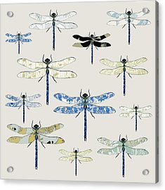 Odonata Acrylic Print by Sarah Hough