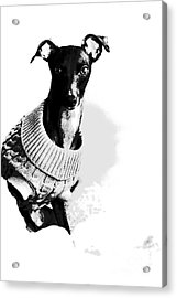 Oh Those Eyes Black And White 2 Acrylic Print by Angela Rath