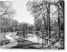 Ohio State University Mirror Lake Acrylic Print by University Icons