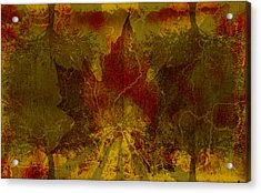 Ok Fall Acrylic Print by Shawn Ross