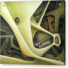 Ol1962dc001 Micro Cosmos 48x58 Acrylic Print by Alfredo Da Silva