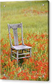 Old Chair In Wildflowers Acrylic Print by Jill Battaglia