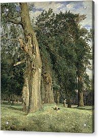 Old Elms In Prater Acrylic Print by Ferdinand Georg Waldmuller