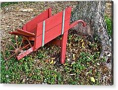 Old Garden Wheel Barrow Acrylic Print by Douglas Barnett