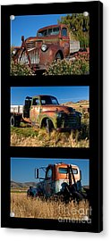 Old Guys Trio 4 Acrylic Print by Idaho Scenic Images Linda Lantzy