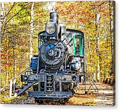 Old Number 3 Acrylic Print by Susan Leggett