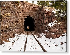 Old Railroad Tunnel Acrylic Print by Sue Smith