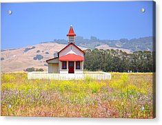 Old School House In A Field Acrylic Print by C Thomas Cooney