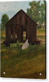 Old Shed Acrylic Print by Betty Pimm