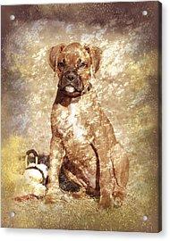 Old Time Boxer Portrait Acrylic Print by Angie Tirado
