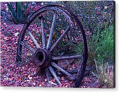 Old Wagon Wheel With Lizard Acrylic Print by Garry Gay