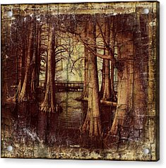 Old World Reelfoot Lake Acrylic Print by Julie Dant