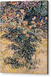 Oleanders, The Hospital Garden At Saint Remy, 1889 Acrylic Print by Vincent Van Gogh