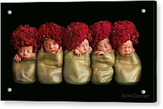 Olivia, Alice, Hugo, Imogin-rose & Mya As Roses Acrylic Print by Anne Geddes