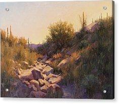 On The Rocks Acrylic Print by Becky Joy