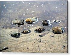 On The Rocks Acrylic Print by Marty Koch