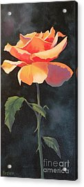 One And Only Acrylic Print by Susan A Becker