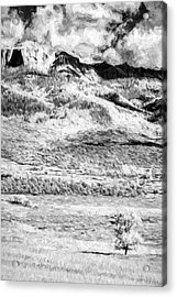 One Stands Alone II Acrylic Print by Jon Glaser