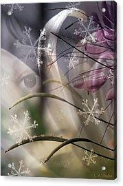 One Year Acrylic Print by Lauren Radke
