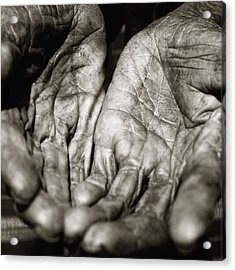 Two Old Hands Acrylic Print by Skip Nall