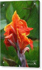 Orange Canna Art Acrylic Print by John W Smith III