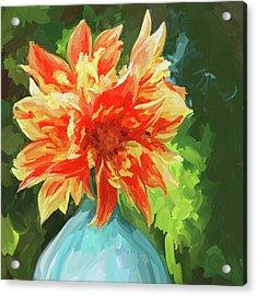 Orange Dahlia - Square Acrylic Print by Jai Johnson