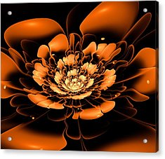 Orange Flower  Acrylic Print by Anastasiya Malakhova
