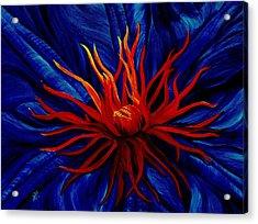 Orange Tango Acrylic Print by Julie Pflanzer