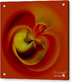 Orb 2 Acrylic Print by Elena Nosyreva