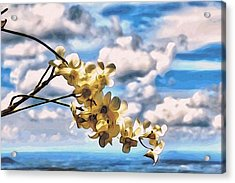 Orchid Flowers Acrylic Print by Alexandre Ivanov