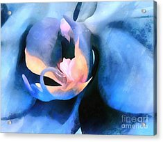 Orchid Lullaby Acrylic Print by Krissy Katsimbras