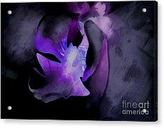 Orchid Of Faith Acrylic Print by Krissy Katsimbras