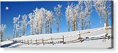 Ore Knob In Snow Panorama Acrylic Print by Alan Lenk
