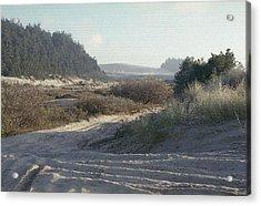 Oregon Dunes 5 Acrylic Print by Eike Kistenmacher