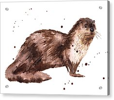 Otter Painting Acrylic Print by Alison Fennell