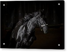 Out Of The Darkness D4367 Acrylic Print by Wes and Dotty Weber