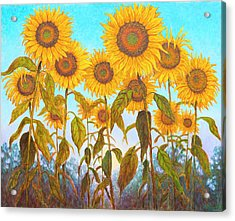 Ovation Sunflowers Acrylic Print by Wiley Purkey