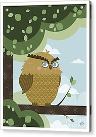 Owl In A Branch Acrylic Print by Pablo Romero