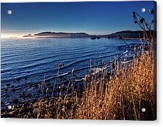 Pacific Blues Acrylic Print by Debra and Dave Vanderlaan