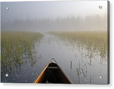Paddling Into The Fog Acrylic Print by Larry Ricker