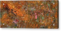 Paint Number 19 Acrylic Print by James W Johnson