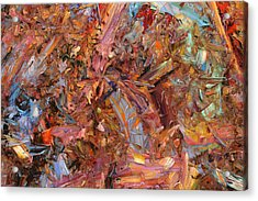 Paint Number 43b Acrylic Print by James W Johnson