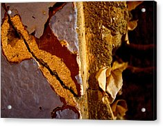 Painted Layers Acrylic Print by Caroline Walker