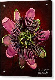 Painted Passion Flower Acrylic Print by Zina Stromberg