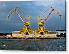 Pair Of Cranes Acrylic Print by Christopher Holmes