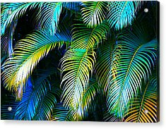 Palm Leaves In Blue Acrylic Print by Karon Melillo DeVega